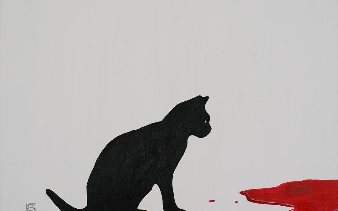 Gato testigo